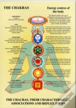 Chakra And The Human Energy Fields