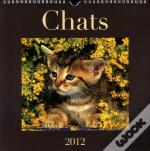 Chats 2012  Le Calendrier