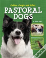 Collies Corgis And Other Pastoral