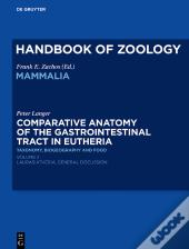 Comparative Anatomy Of The Gastrointestinal Tract In Eutheria Ii