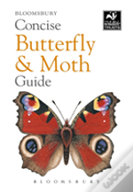 Concise Butterfly And Moth Guide Bw