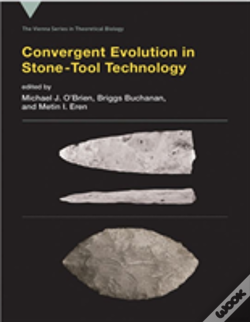 Wook.pt - Convergent Evolution In Stone-Tool Technology