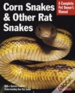 Corn Snakes And Other Rat Snakes