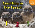 Counting In The Forest