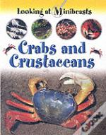 Crabs And Other Crustaceans