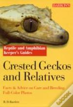 Crested Geckos And Relatives