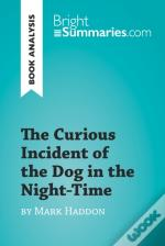 Curious Incident Of The Dog In The Night-Time By Mark Haddon (Book Analysis)