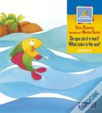 De Que Cor é o Mar? - What Color is the Sea?