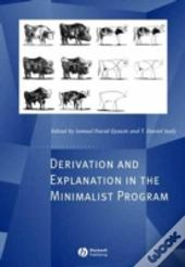 Derivation And Explanation In The Minimalist Program