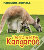 Discover The Kangaroo