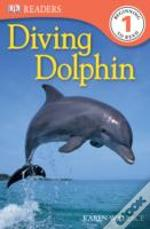 Diving Dolphin