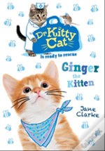 Dr Kittycat Is Ready To Rescue: Ginger The Kitten