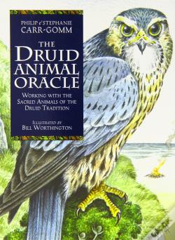 Wook.pt - Druid Animal Oracle