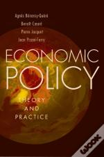 Economic Policy: Theory And Practice
