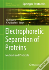 Electrophoretic Separation Of Proteins