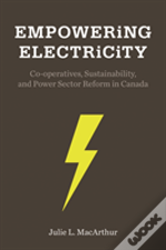 Empowering Electricity