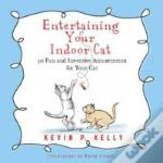 Entertaining Your Indoor Cat : Fun And Inventive Amusements For Your Indoor Cat