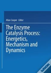 Enzyme Catalysis Process