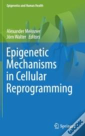 Epigenetic Mechanisms In Cellular Reprogramming