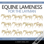 Equine Lameness For The Layman
