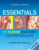 Essentials Of Human Anatomy & Physiology Laboratory Manual