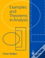 Examples And Theorems In Analysis