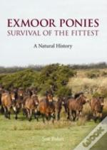Exmoor Ponies Survival Of The Fittest