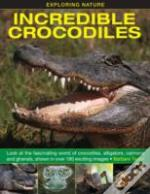 Exploring Nature: Incredible Crocodiles