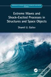 Extreme Waves And Shock-Excited Processes In Structures And Space Objects