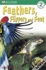 Feathers, Flippers And Feet