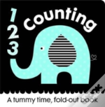First Focus Frieze Counting