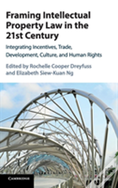 Framing Intellectual Property Law In The 21st Century