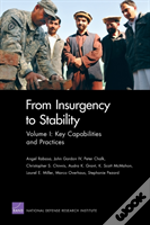 From Insurgency To Stability