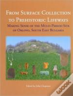 From Surface Collection To Prehistoric Lifeways