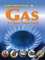 Gas A Clean Fossil Fuel