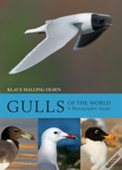 Wook.pt - Gulls Of The World