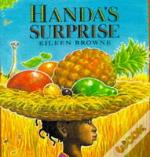 Handa'S Surprisebig Book