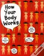 How Do Our Bodies Work?