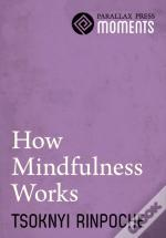 How Mindfulness Works