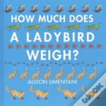 How Much Does A Ladybird Weigh