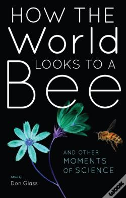 Wook.pt - How The World Looks To A Bee