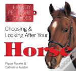 How To Choose And Care For Your Horse