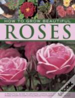 How To Grow Beautiful Roses