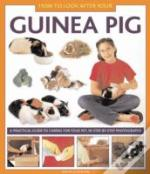 How To Look After Your Guinea Pig