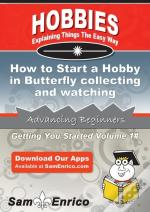 How To Start A Hobby In Butterfly Collecting And Watching
