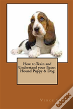 How To Train And Understand Your Basset Hound Puppy & Dog