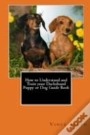 How To Understand And Train Your Dachshund Puppy Or Dog Guide Book