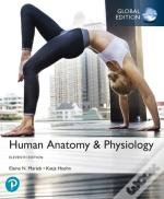 Human Anatomy & Physiology Plus Pearson Masteringanatomy & Physiology With Pearson Etext, Global Edition