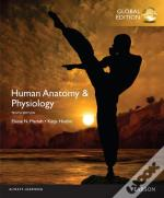 Human Anatomy & Physiology With Mastering A&P