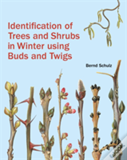 Wook.pt - Identification Of Trees And Shrubs In Winter Using Buds And Twigs